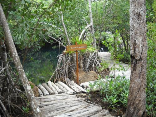 Riviera-Maya-Hacienda Tres Rios Camino